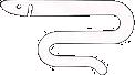 Eel Pass Design